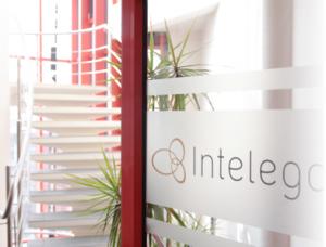 IT-Consulting - Intelego Dienstleistungen
